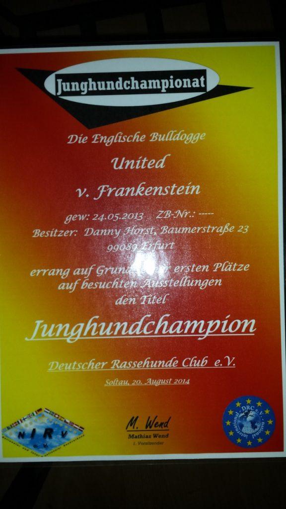 """Junghunde Championat """"United v. Frankenstein"""""""